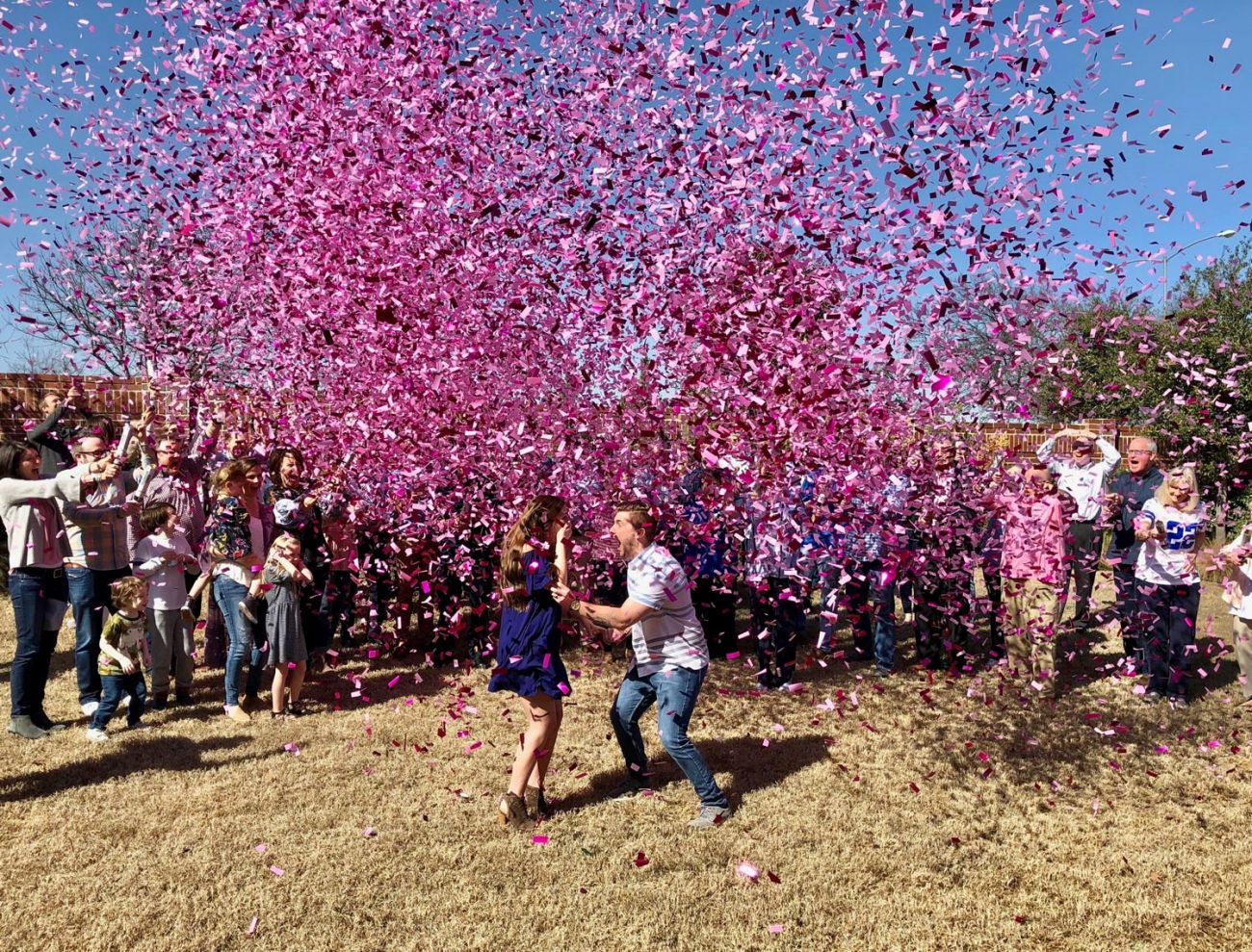 gender reveal confetti cannon kit 2 blue 2 pink superior